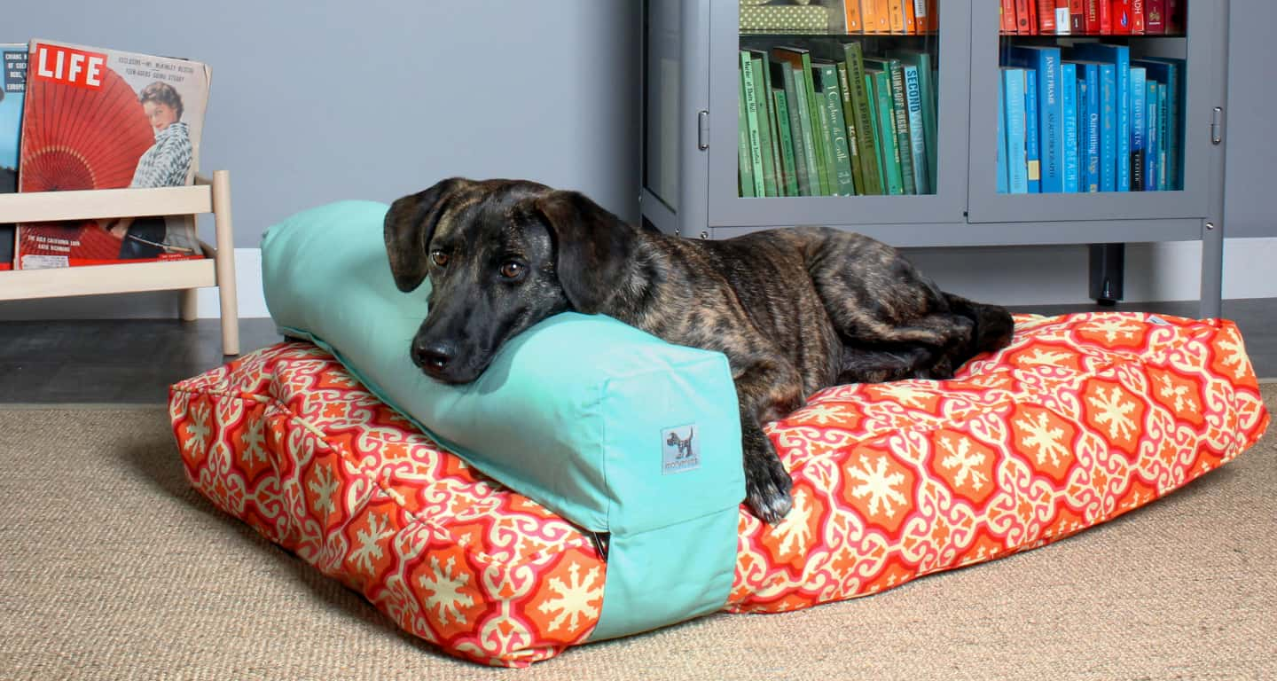 f94fe77af6c4 Molly Mutt: The Dog Bed Dogs Love™