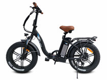 Bagi Bike B10 Fat Tire Folding Electric Bicycle
