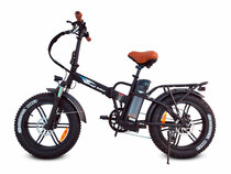 Bagi Bike B20 Fat Tire Folding Electric Bicycle