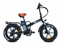 Bagi Bike B20 Fat Tire Folding Electric Bike