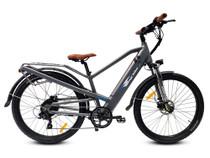 Bagi Bike B27 Trail TRX Electric Mountain Bike
