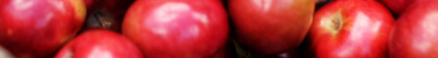 apple-fillings-banner.jpg