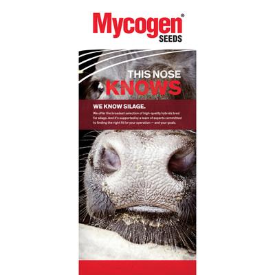 Mycogen Seeds - Beef - Blade 36