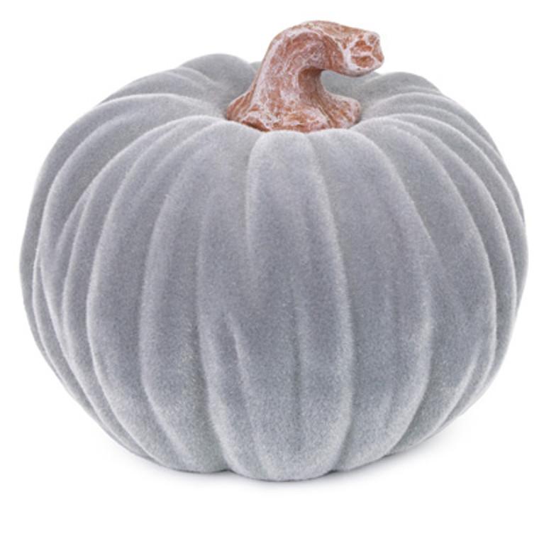 Medium Velvet Pumpkin - Grey