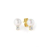 Crislu Accented Pearl Stud Earrings in Yellow Gold