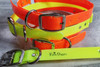 """Extra Large Dog Collars  1"""" wide  25""""long"""