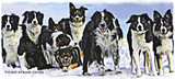 """""""Snow Dogs"""" Greeting Cards By Vickie Close"""