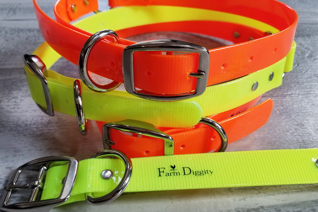 "Extra Large Dog Collars  1"" wide  25""long"