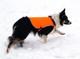Reflective Safety Vest - Set Out Vest