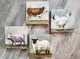 Farm Animals  Giclee Wall Art /Set of 4