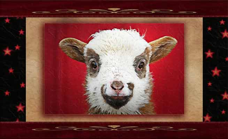 """Sheepish Smile"" Greeting Cards By Vickie Close"
