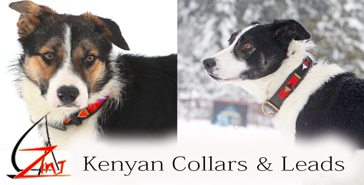 kenyan-collar-for-page-.jpg