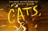 CATS The Movie: Review