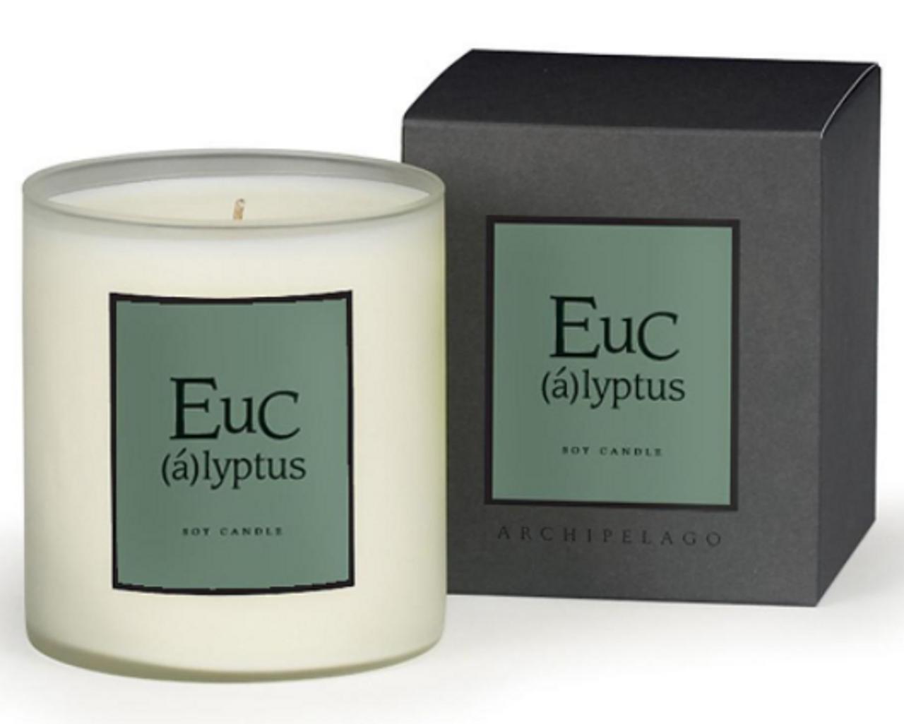 Archipelago Eucalyptus Home Candle