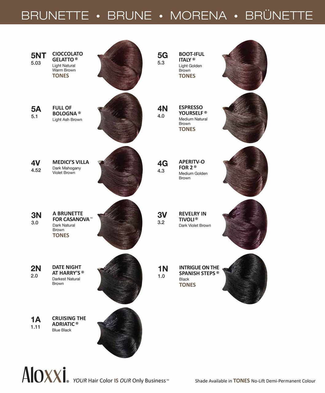Aloxxi Brunette Color Chart