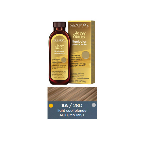 Clairol 28D Autumn Mist Hair Color 2 oz