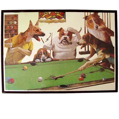 Pool Dog Mirror - Jack