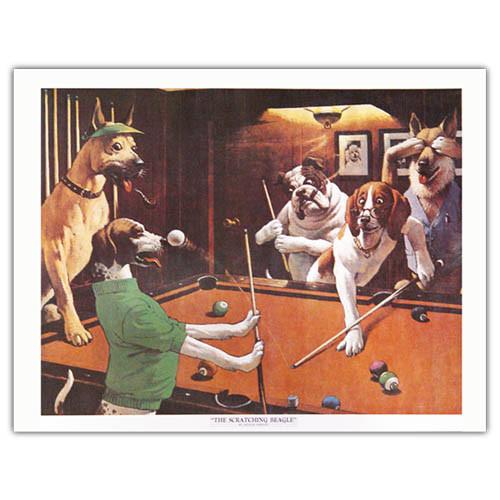 Pool Dog Print - Beagle
