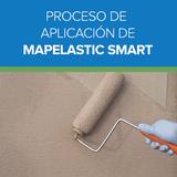 Proceso de Aplicación de Mapelastic Smart