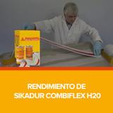 Rendimiento de Sikadur Combiflex H20
