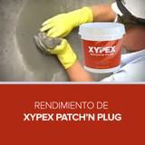 Rendimiento de Xypex Patch'n Plug