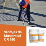 Ventajas de Masterseal CR 190