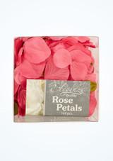 Petali di rosa singoli 164 pezzi davanti. [Rosa]