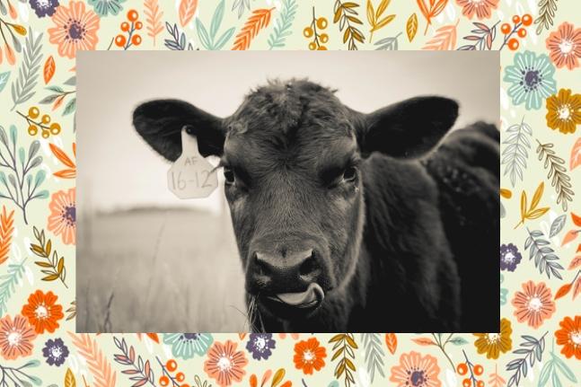 9-10-19-farm-girl-pic1.png