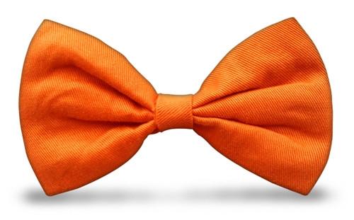 Bow Ties - Orange