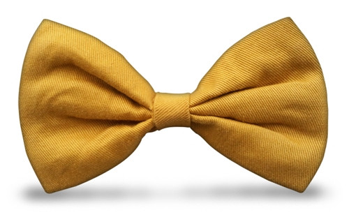 Bow Ties - Gold