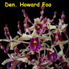 Den. Howard Foo x Imelda Marina Masagung - 50mm