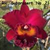 Rlc. Subprasert 'No. 2' - 50mm