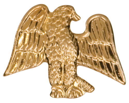 Eagle Chenille Pin