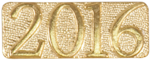 Year Chenille Pin (2016)