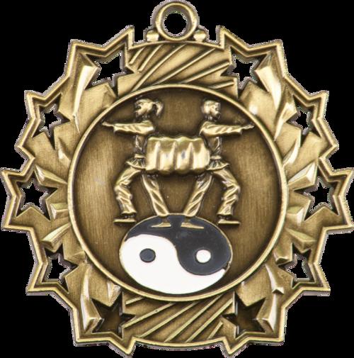 Martial Arts Ten Star Medal