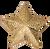 Star Chenille Pin