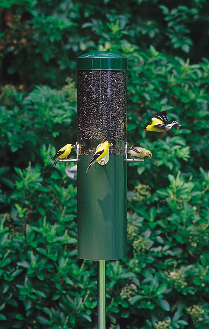 Classic Pole Mounted Bird Feeder
