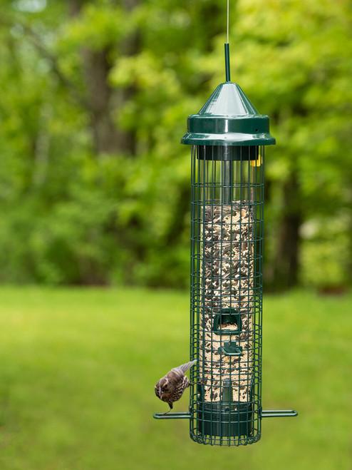 Squirrel Buster Classic Bird Feeder