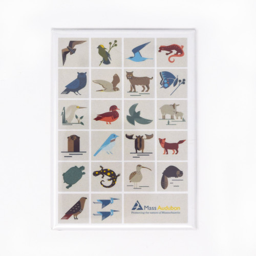 Mass Audubon Sanctuary Icons Magnet