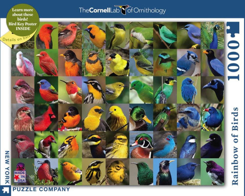 Rainbow of Birds 1,000-piece Jigsaw Puzzle