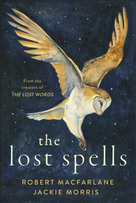 """""""The Lost Spells"""" children's book cover"""