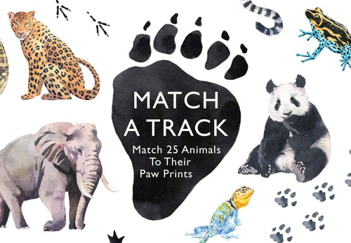 """Match A Track"" Matching Card Game"