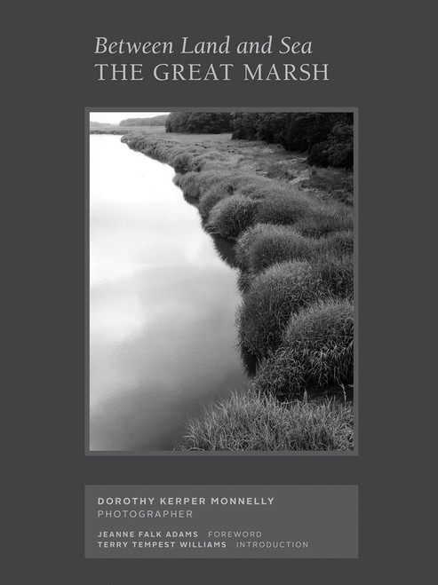 The Great Marsh: Between Land and Sea