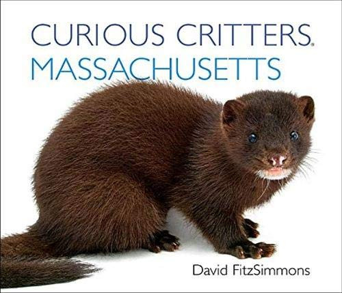 Curious Critters Massachusetts Board Book
