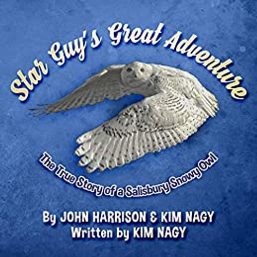 Star Guy's Great Adventure