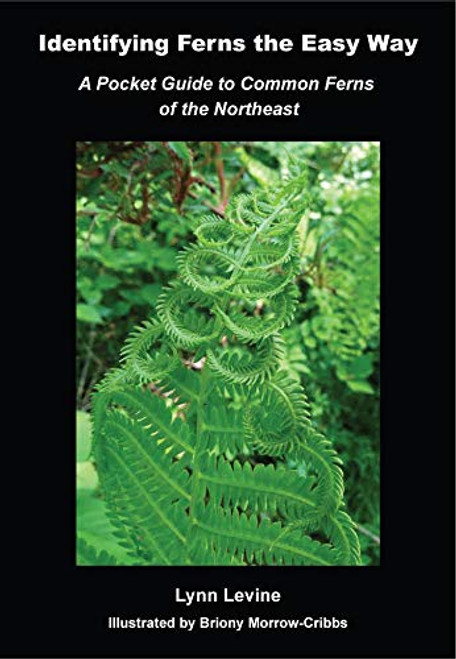 Identifying Ferns The Easy Way: A Pocket Guide to the Common Ferns of the Northeast