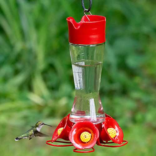 Perky Pet Glass Hummingbird Feeder