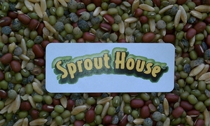 Dozen Sprouting Mixes - Certified Organic - Non-GMO (Price includes Shipping) Delaware County Special; Holly's Bean Mix; Lentils Together; Rainbow Bean Mix; Sald Mix; September Morn; Sol's High Pro