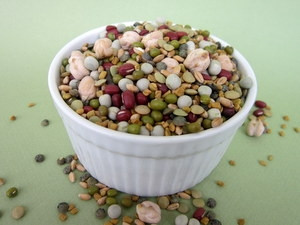 Sprout Lady Rita's Favorite Bean Certified Organic Non-GMO Sprouting Seed Mix with Fenugreek