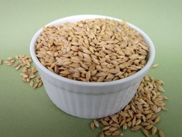 Barley Seeds Certified Organic Non-GMO (Whole Barley) for Barley Grass Organic Sprouting Seeds